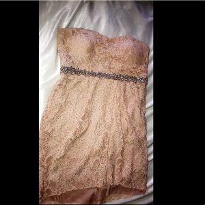 Strapless Pink Lace Dress